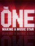 The One: Making a Music Star