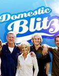 Domestic Blitz