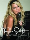 Taylor Swift: Picture to Burn