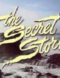 The Secret Storm