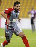 Adel Lamy