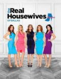 The Real Housewives of Dallas (season 1)