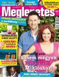Meglepetés Magazine [Hungary] (7 July 2011)