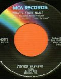 What's Your Name (Lynyrd Skynyrd song)