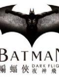 Batman: Dark Flight