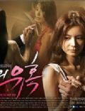 Temptation of Wife (2008 TV series)