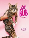 Lil Bub & Friendz