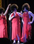 Razzie Awards [2007]