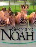 Second Noah