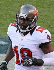 Mike Williams (wide receiver, born 1987)