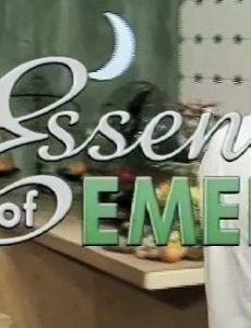 Essence of Emeril