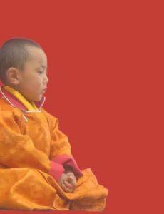 20th Kushok Bakula Rinpoche