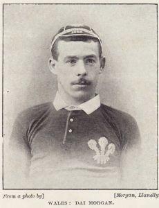 David Morgan (rugby player)