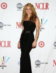 2008 ALMA Awards