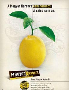Magyar Narancs Magazine [Hungary]