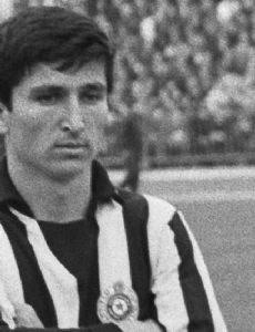 Mustafa Hasanagić