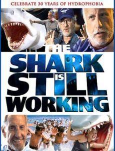 The Shark Is Still Working