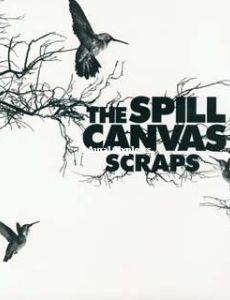 Spill Canvas