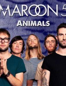 Maroon 5: Animals