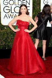 Catherine Zeta-Jones: 72nd Annual Golden Globe Awards 2015- Arrivals