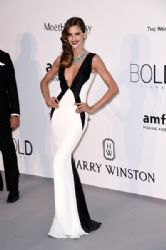 Izabel Goulart: amfAR's 22nd Cinema Against AIDS Gala