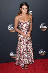 Lea Michele in J. Mendel  Dress :  2017 ABC Upfront