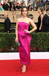 Sophia Bush wears  Marchesa Dress : 23rd Annual Screen Actors Guild Awards
