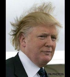 HAIR-RAISING ANTICS
