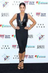 2013 27th Annual ARIA Awards