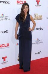 Daniella Alonso: 2014 NCLR ALMA Awards - Red Carpet