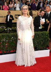 Meryl Streep wears Valentino Dress : 23rd Annual Screen Actors Guild Awards