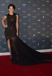 Bárbara Mori: Fenix Awards 2014