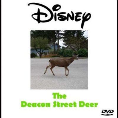 The Deacon Street Deer