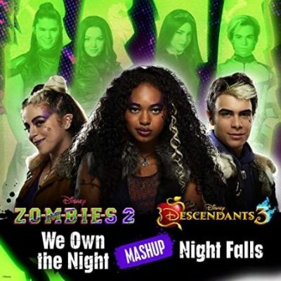 Various Artists: We Own the Night/Night Falls Mashup