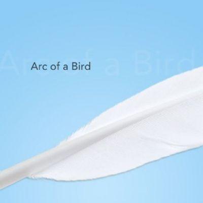 Arc of a Bird