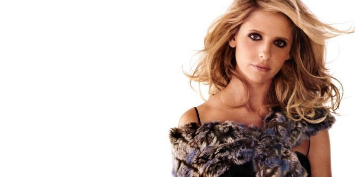 who is dating sarah michelle gellar