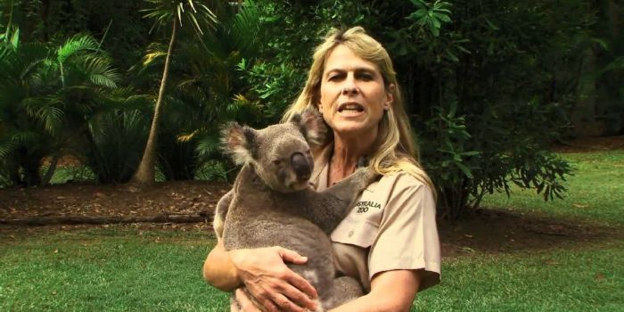 irwin dating The daughter of the late steve irwin gushes about boyfriend chandler powell.