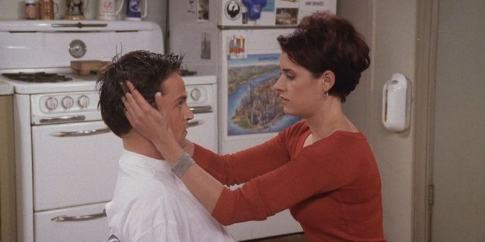Matthew Perry and Paget Brewster