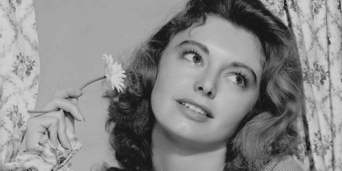 siluria single personals Cathy o'donnell dating history  cathy o'donnell is possibly single  american actress cathy o'donnell was born ann steely on 6th july, 1923 in siluria, .